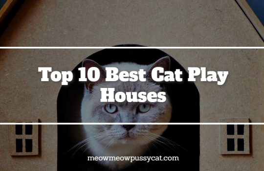 Top 10 Best Cat Play Houses