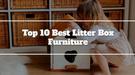 Top 10 Best Litter Box Furniture