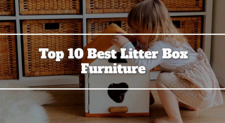 Top 10 Best Litter Box Furniture