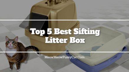 Top 5 Best Sifting Litter Box