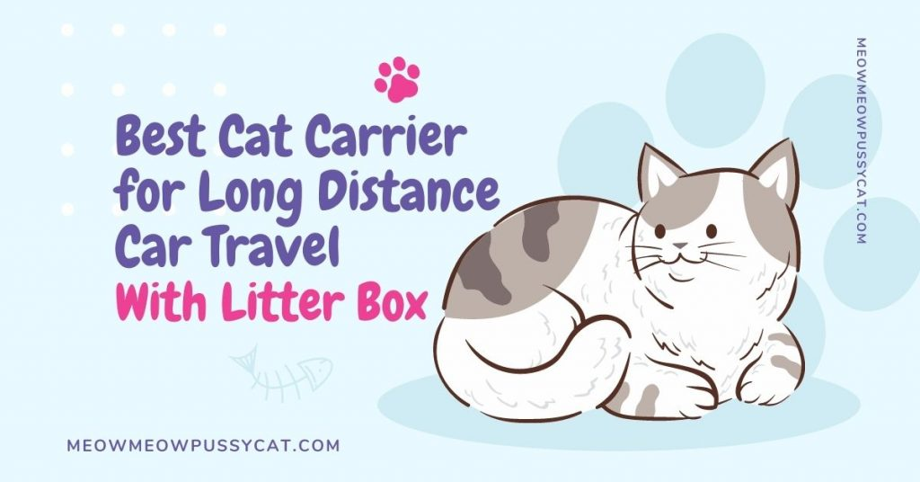 Best Cat Carrier for Long Distance Car Travel with Litter Box
